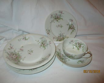 Theodore Haviland Limoges France Apple Blossom 5pc Set Cup Saucer, Salad & Bread Plate , Soup Bowl