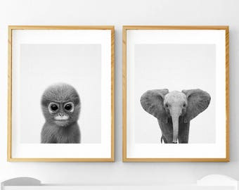 Safari Animal Print, Nursery Animals, Nursery Decor, Monkey Print, Monkey Wall Art, Elephant Print, Safari Animal, Nursery Printable