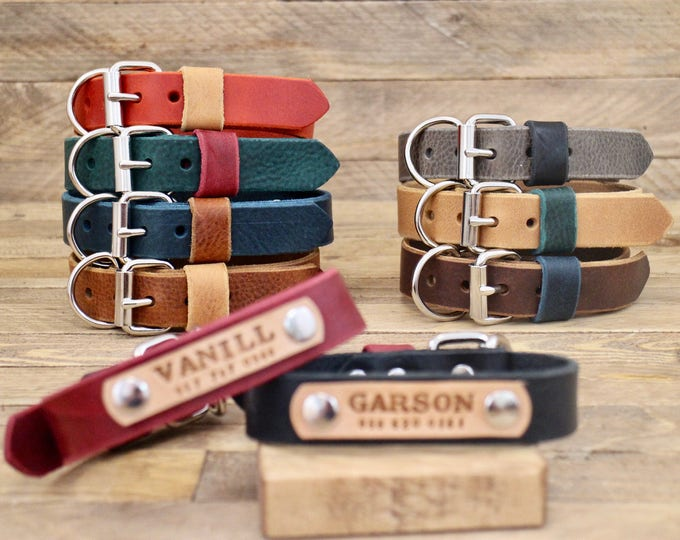 Dog collar, Leather dog collar, FREE ID TAG, Handmade leather collar, Silver hardware, Dog id, Colorful collars, Dog Leash, colour.