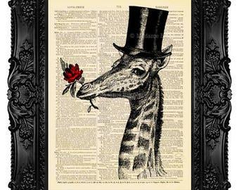 Giraffe Gentleman Dictionary Art Print no 455