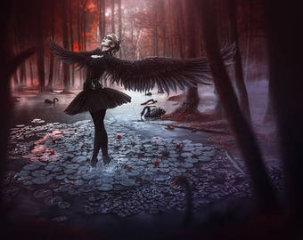 A4 print 'Black Swan'