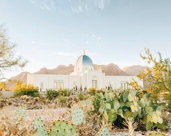 Tucson Arizona Temple 7