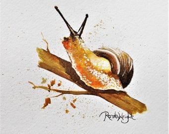 Amadeus - a golden snail from my critter watercolour series
