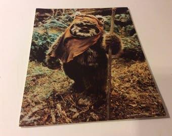 Vintage Star Wars Wicket Ewok 8x10 Lucas Fan Club Photo - 1983