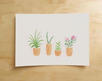 Pot Plants Postcard