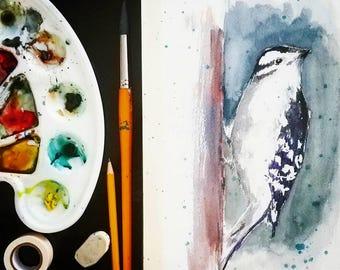 Downy Woodpecker watercolor 8x10 bird archival quality print