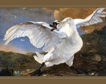 The Threatened Swan.