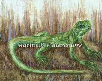 Watercolor Gecko/ Lizard Art Print 8 x 10 in