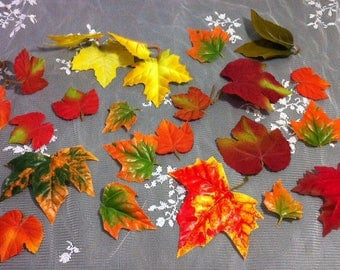 Fall Leaves for your craft project