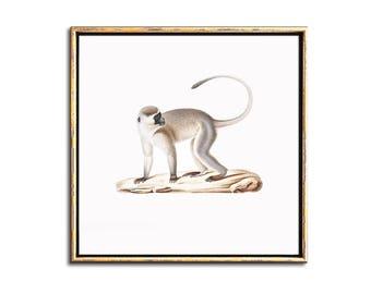 Monkey Nursery Decor, Animal Nursery Art, Jungle Nursery, Jungle Animal, Decor, Printable Art, Monkey Art, Print, Nursery Animal Print, Art
