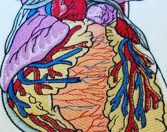 Large Anatomical Heart patch