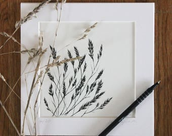 Wild grasses print, pen and ink drawing