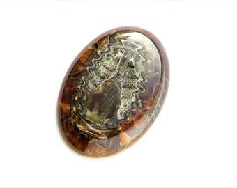 Ammonite-simbircite with silver pyrite geode cabochon 59х41х7 mm