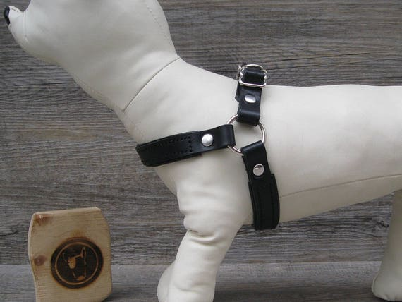Step In Dog Harness for Small Dogs, Black Leather No Pull Harness, Comfort and Adjustable Soft Padded Dog Harness, Handmade Dog Harness