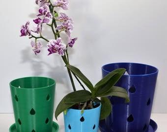"""3.5"""" Orchid Pot"""