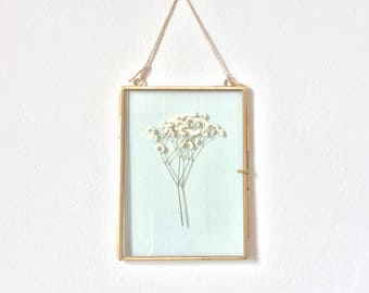 hanging glass specimen frame with white pressed flowers - small