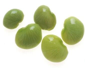 25 Dwarf Henderson BABY LIMA BEAN Bush White Phaseolus Lunatus Vegetable Seeds