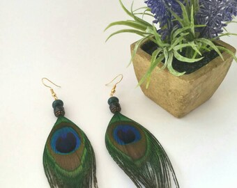 Ethnic earrings real peacock feathers and gold plated hooks