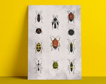 Beetles 2 poster