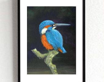 Kingfisher, Kingfisher Print, Kingfisher Digital Art, Wildlife Art