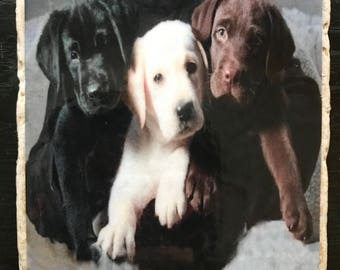 Natural Stone Drink Coasters - set of 4 - labrador puppies