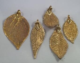 5 Pcs 24k gold Filled Aspen leaf I 24K gold filled grapes leaf I 24k gold filled Olive leafs I gold filled leafs I Aspen leaf pendant