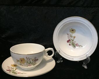 Superior Hall Quality Dinnerware 3pc setting, Brown Eyed Susans and Asters
