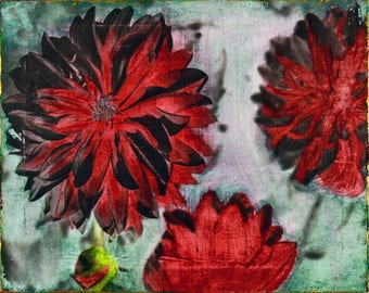 Red Flowers on Green
