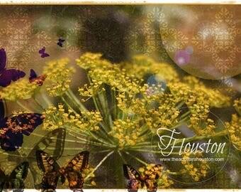 Botanical Art Card 5