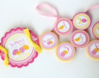 Pink Lemonade First Year Photo Banner - 12 Month Photo Banner - Pink Lemonade Birthday Party Photo Banner