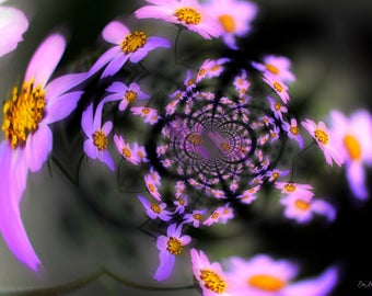 Bold, photomontage, fractal composition of flowers pink