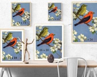 Vintage Tanager Print - Vintage Bird Artwork - Botanical Bird Print - Vintage Botanical Print - Large Bird Art - Vintage Bird Poster Print