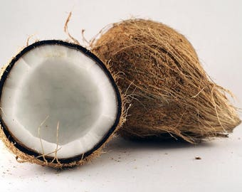 Coconut Fragrance Oil - Soap fragrance oil - Scents for soap