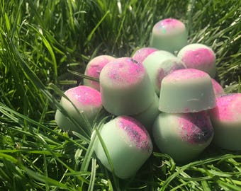 WATERMELON scented soy wax melts tarts