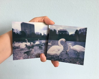 Flaucher double feature - Polaroid print, photography on ALU-Dibond 9 × 9, polished, set of 2