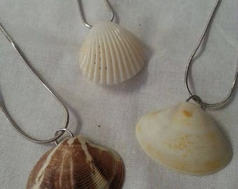 Jewels of the Pacific - Genuine Pacific Ocean Seashell Necklace