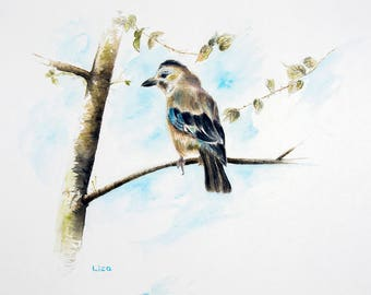 Eurasian Jay On A Tree Branch Original Watercolor Painting High Quality Giclée Print canvas home decor office nursery animal art gift PRINT