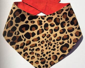 Hot Cheetah