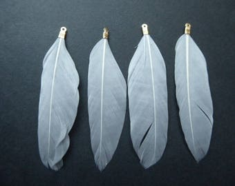 4 light grey feathers approximately 8.5 cm