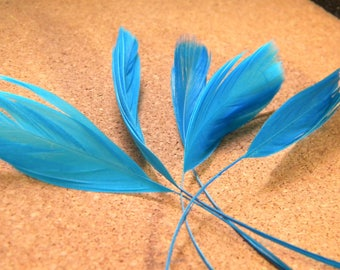 has 5 feather stem teal-turquoise - 14 cm 19 cm - liked 01
