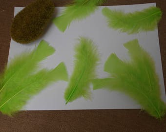 10 lime green feathers 13 cm