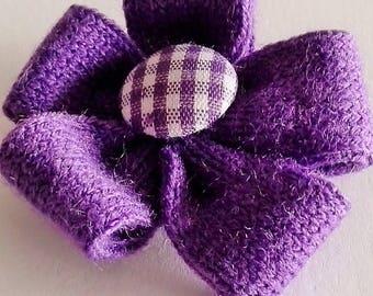 Purple wool flower