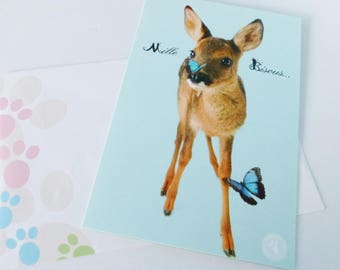card one thousand kisses deer little deer and Butterfly greeting card with envelope
