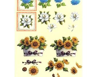Sunflower/scheurich blue PAR025