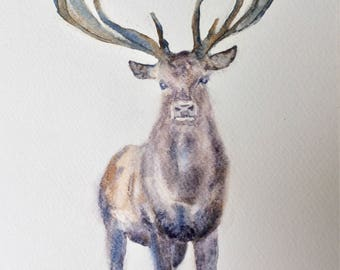 Stag Painting, Watercolour Stag, Stag Art, Giclée print, Wildlife Watercolour