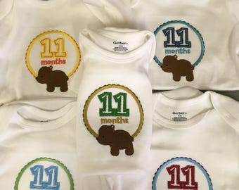 Monthly baby onesies  12 months.  Embroidered.