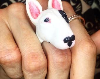 bull terrier кольцо