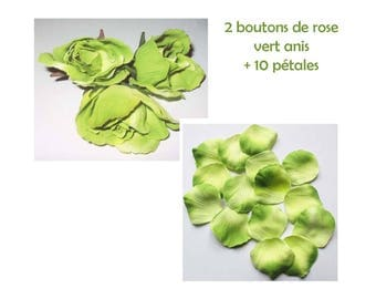 its 10 assorted color (velvety) for scrapbooking petals + 2 lime green (2 tones) fabric roses