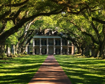 Oak Alley Plantation, Louisiana, Southern Heritage, History, Just in Time for the Holidays