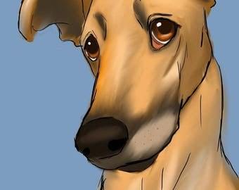 Cartoon Pet Headshots